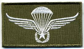 Fallskjermjeger merke